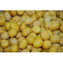 IQF frozen chestnut price per kg peeled chestnut frozen peeled chestnut